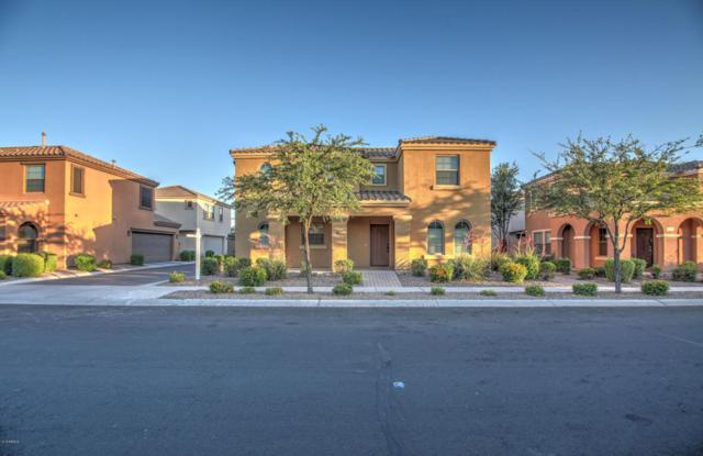3145 E Harrison Street, Gilbert, AZ 85295 (MLS #5767589) :: Essential Properties, Inc.
