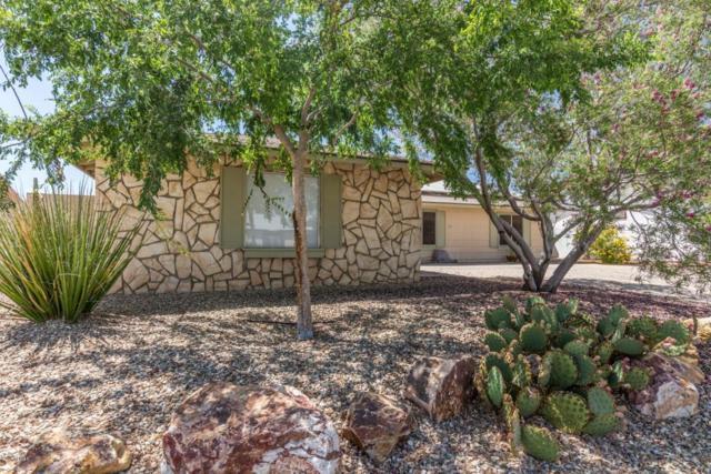 12026 S Tomi Drive, Phoenix, AZ 85044 (MLS #5767600) :: My Home Group