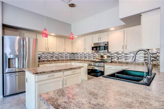 27217 N 96th Lane, Peoria, AZ 85383 (MLS #5767608) :: Essential Properties, Inc.