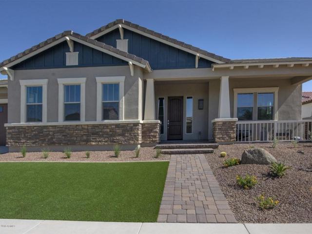 20540 W Meadowbrook Avenue, Buckeye, AZ 85396 (MLS #5767628) :: Desert Home Premier