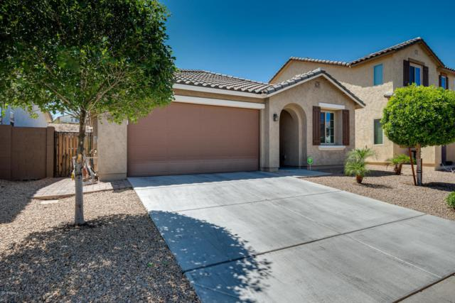 21740 N 119TH Drive, Sun City, AZ 85373 (MLS #5767642) :: My Home Group