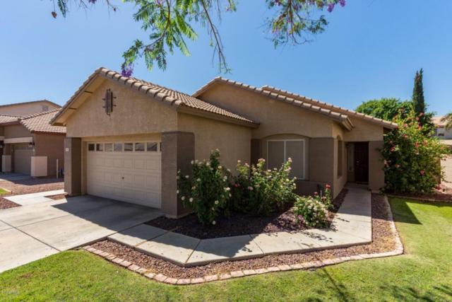 3687 E Longhorn Drive, Gilbert, AZ 85297 (MLS #5767663) :: My Home Group