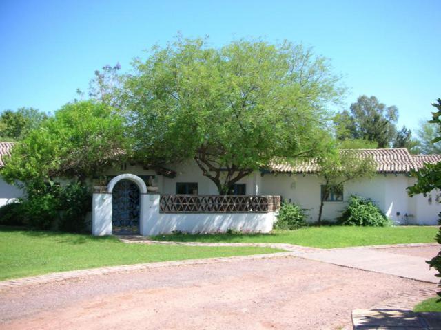 2281 W Galveston Street, Chandler, AZ 85224 (MLS #5767666) :: Keller Williams Legacy One Realty