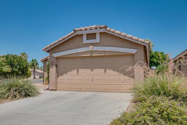 802 E Potter Drive, Phoenix, AZ 85024 (MLS #5767721) :: Kortright Group - West USA Realty
