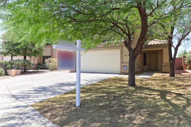 1442 S 231ST Lane, Buckeye, AZ 85326 (MLS #5767725) :: Desert Home Premier