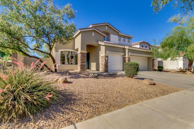 4024 E Reins Road, Gilbert, AZ 85297 (MLS #5767751) :: My Home Group