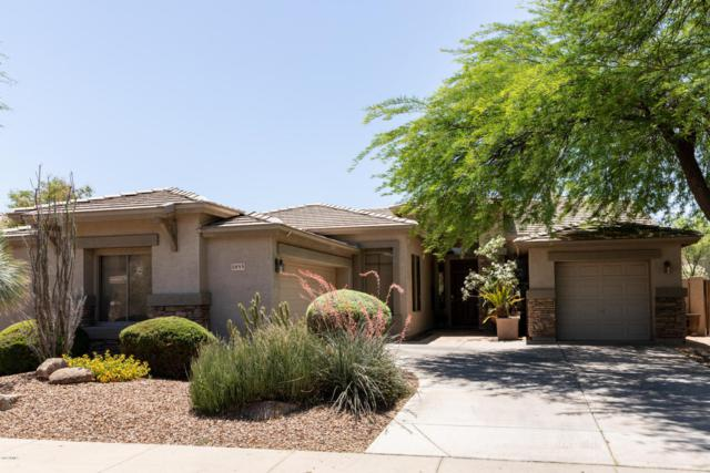 1855 E Locust Place, Chandler, AZ 85286 (MLS #5767813) :: Yost Realty Group at RE/MAX Casa Grande