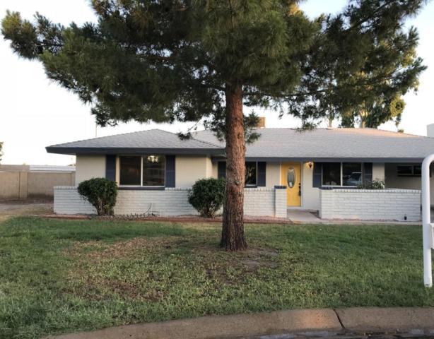 284 S Cascada Circle, Litchfield Park, AZ 85340 (MLS #5767872) :: Essential Properties, Inc.