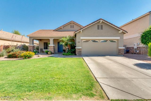1243 E Macaw Drive, Gilbert, AZ 85297 (MLS #5767880) :: My Home Group