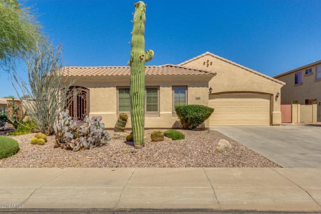 4205 S Marble Street, Gilbert, AZ 85297 (MLS #5767961) :: My Home Group