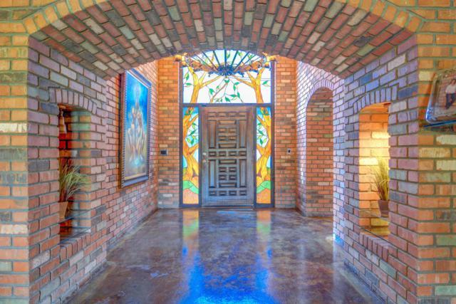 2515 N Harris Drive, Mesa, AZ 85203 (MLS #5767972) :: Keller Williams Legacy One Realty