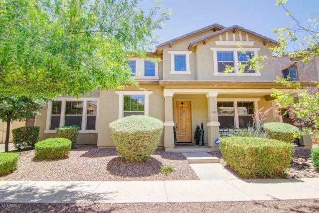 3315 E Franklin Avenue, Gilbert, AZ 85295 (MLS #5768013) :: Lux Home Group at  Keller Williams Realty Phoenix