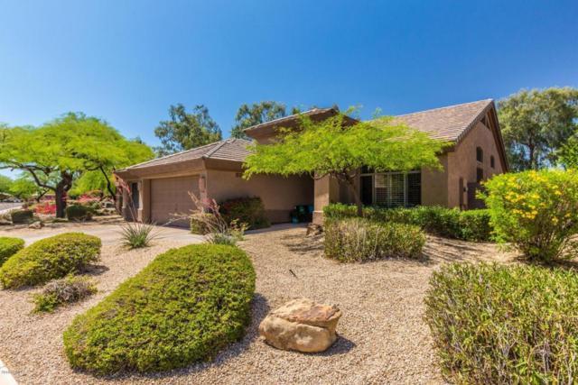6768 E Evans Drive, Scottsdale, AZ 85254 (MLS #5768025) :: My Home Group