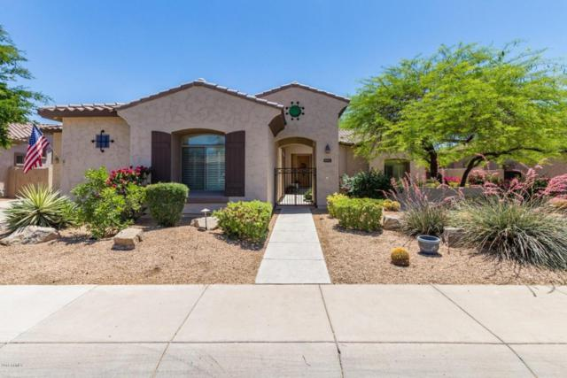 3173 E Birchwood Place, Chandler, AZ 85249 (MLS #5768059) :: The Everest Team at My Home Group