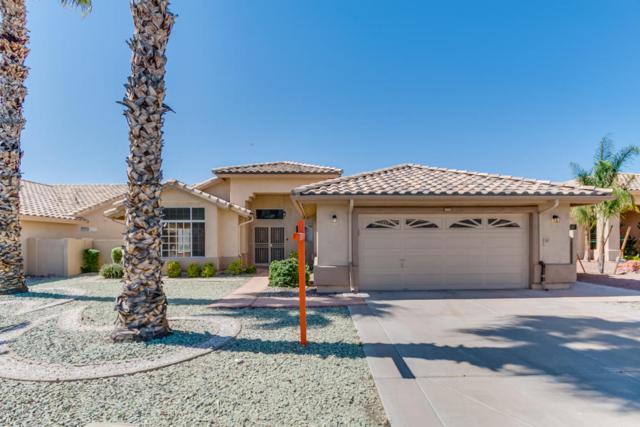 14575 W Morning Star Trail, Surprise, AZ 85374 (MLS #5768068) :: Desert Home Premier