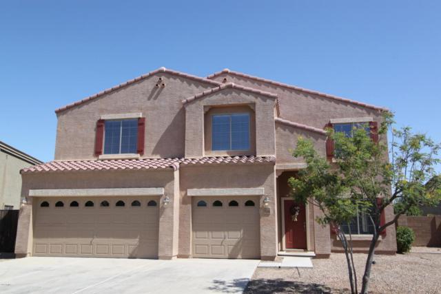 42990 W Wild Horse Trail, Maricopa, AZ 85138 (MLS #5768088) :: Yost Realty Group at RE/MAX Casa Grande