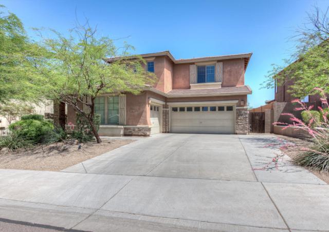 8513 W Desert Elm Lane, Peoria, AZ 85383 (MLS #5768140) :: The Laughton Team