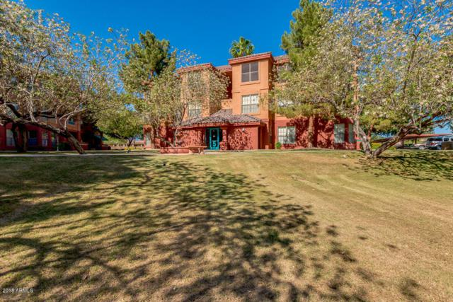 14950 W Mountain View Boulevard #5202, Surprise, AZ 85374 (MLS #5768171) :: My Home Group