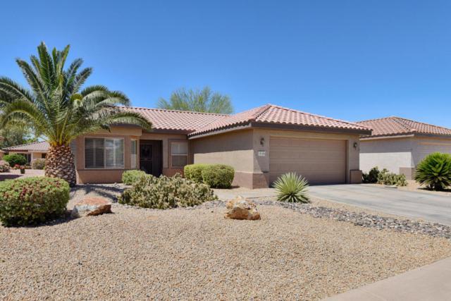 15129 W Cactus Ridge Way, Surprise, AZ 85374 (MLS #5768200) :: Desert Home Premier