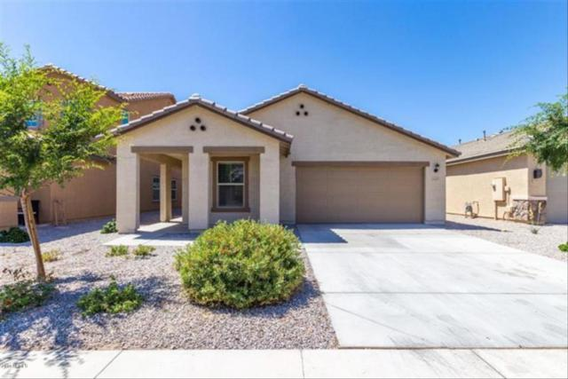 40839 W Tamara Lane, Maricopa, AZ 85138 (MLS #5768204) :: Yost Realty Group at RE/MAX Casa Grande