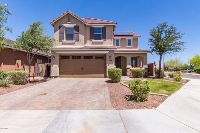 25105 N 55TH Drive, Phoenix, AZ 85083 (MLS #5768231) :: The Laughton Team
