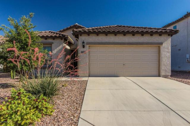 8029 W Candlewood Way, Florence, AZ 85132 (MLS #5768285) :: Yost Realty Group at RE/MAX Casa Grande
