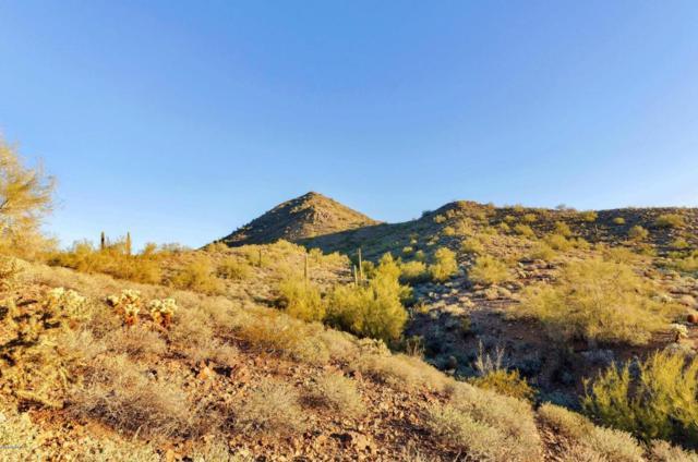 26232 N Central Avenue, Phoenix, AZ 85085 (MLS #5768291) :: The Daniel Montez Real Estate Group
