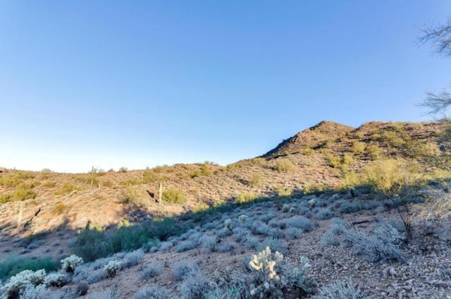 26234 N Central Avenue, Phoenix, AZ 85085 (MLS #5768294) :: The Daniel Montez Real Estate Group
