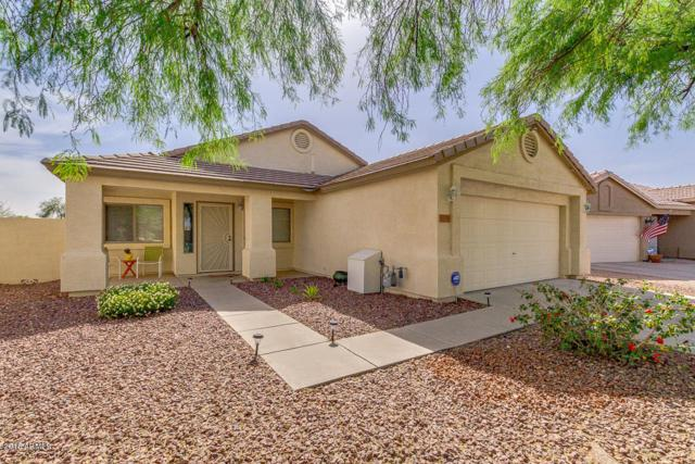 30356 N Royal Oak Way, San Tan Valley, AZ 85143 (MLS #5768303) :: Yost Realty Group at RE/MAX Casa Grande