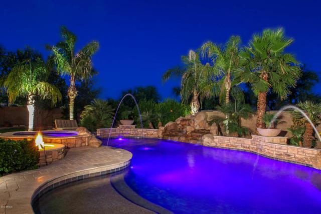 11307 E Elmhurst Drive, Chandler, AZ 85249 (MLS #5768330) :: My Home Group