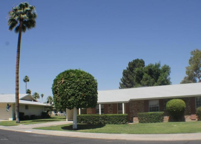 9212 N 109TH Avenue, Sun City, AZ 85351 (MLS #5768340) :: Kepple Real Estate Group