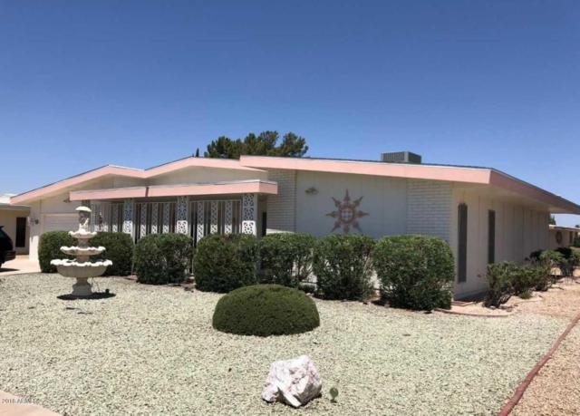 10838 W Sequoia Drive, Sun City, AZ 85373 (MLS #5768371) :: Essential Properties, Inc.