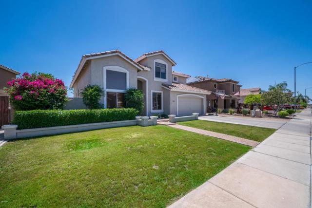 10849 W Carlota Lane, Sun City, AZ 85373 (MLS #5768399) :: Essential Properties, Inc.