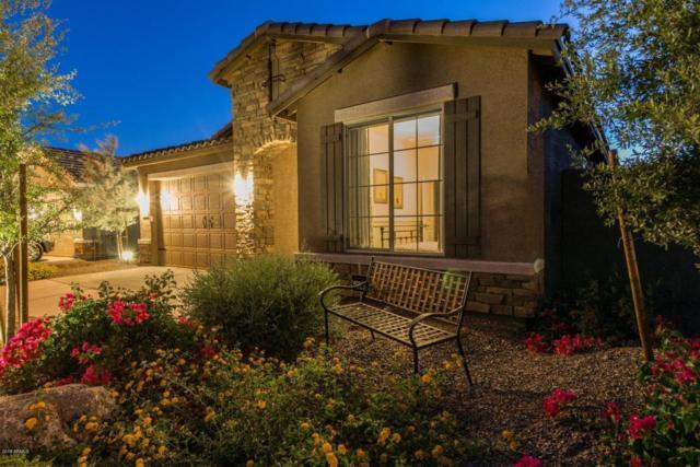1942 N 212TH Lane, Buckeye, AZ 85396 (MLS #5768408) :: Essential Properties, Inc.