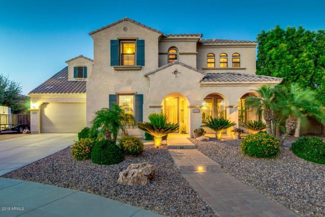 275 S 167TH Lane, Goodyear, AZ 85338 (MLS #5768444) :: Essential Properties, Inc.