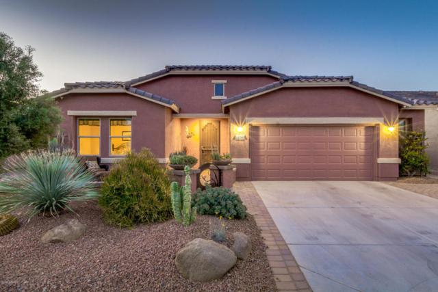 42790 W Darter Drive, Maricopa, AZ 85138 (MLS #5768480) :: Kortright Group - West USA Realty