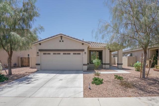 9332 N 182ND Lane, Waddell, AZ 85355 (MLS #5768485) :: Phoenix Property Group
