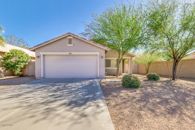 3595 E Thunderheart Trail, Gilbert, AZ 85297 (MLS #5768518) :: Yost Realty Group at RE/MAX Casa Grande