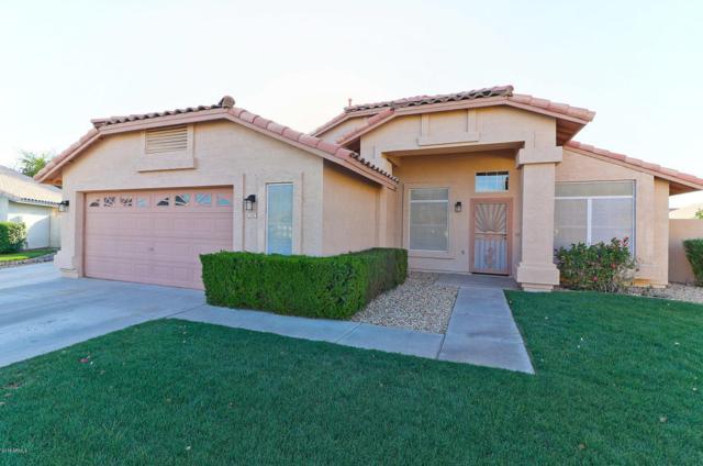 2562 N 124TH Drive, Avondale, AZ 85392 (MLS #5768546) :: Brett Tanner Home Selling Team