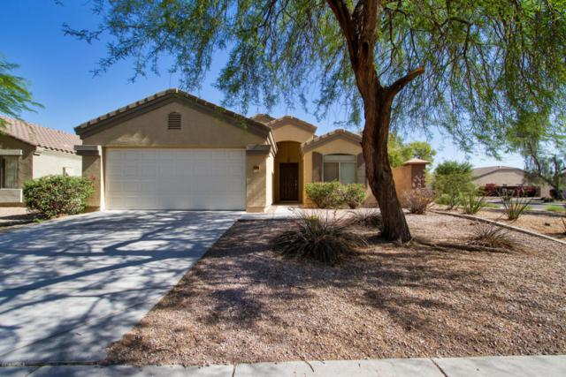 10606 W Hess Street, Tolleson, AZ 85353 (MLS #5768555) :: Essential Properties, Inc.