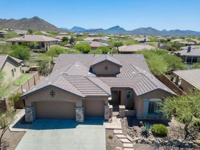 41623 N Laurel Valley Way, Anthem, AZ 85086 (MLS #5768565) :: Riddle Realty