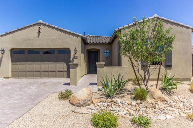 12013 S 186TH Drive, Goodyear, AZ 85338 (MLS #5768635) :: Brett Tanner Home Selling Team
