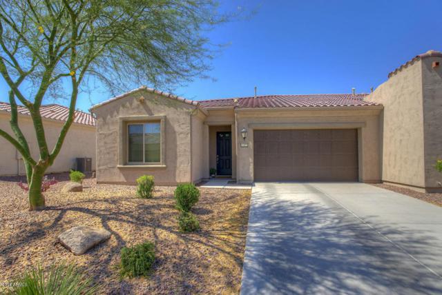 16372 W Piccadilly Road, Goodyear, AZ 85395 (MLS #5768639) :: Essential Properties, Inc.