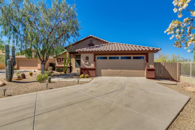 4401 E Red Range Way, Cave Creek, AZ 85331 (MLS #5768647) :: Riddle Realty