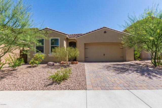 13719 W Linanthus Road, Peoria, AZ 85383 (MLS #5768648) :: My Home Group