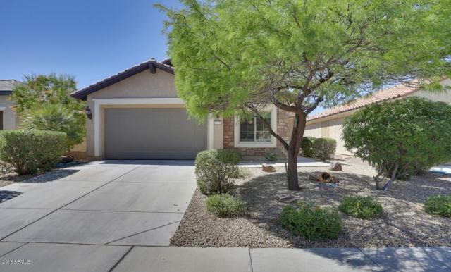 26333 W Potter Drive, Buckeye, AZ 85396 (MLS #5768660) :: Yost Realty Group at RE/MAX Casa Grande