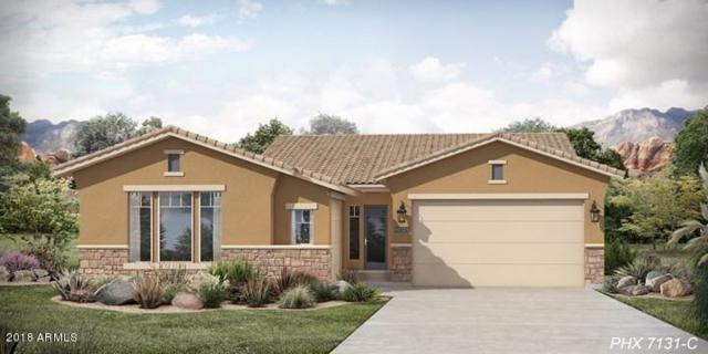 12120 S 182nd Avenue, Goodyear, AZ 85338 (MLS #5768675) :: Brett Tanner Home Selling Team