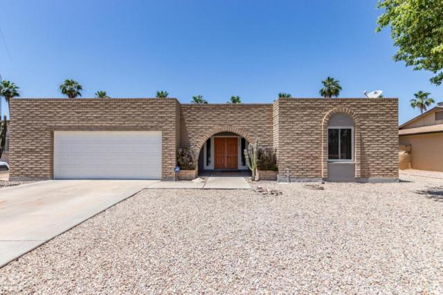 4822 S Heather Drive, Tempe, AZ 85282 (MLS #5768681) :: Conway Real Estate