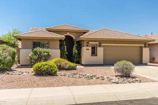 6809 W Avenida Del Rey, Peoria, AZ 85383 (MLS #5768697) :: Conway Real Estate