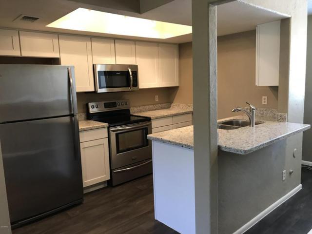 461 W Holmes Avenue #241, Mesa, AZ 85210 (MLS #5768700) :: My Home Group